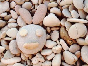 Bunny rocks